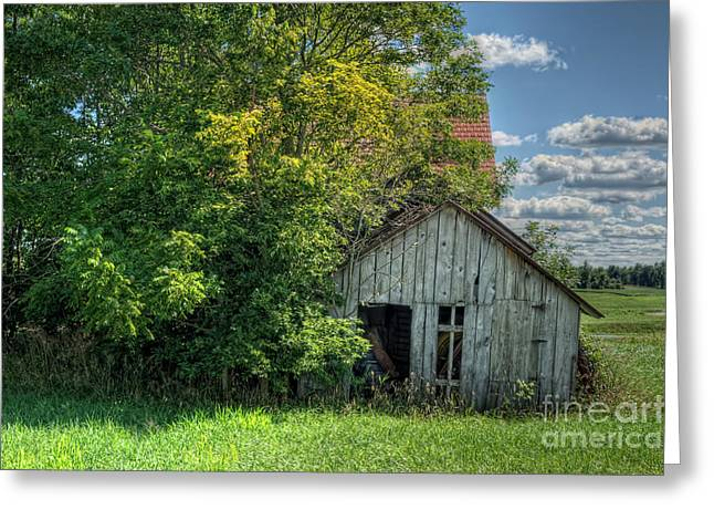 Old Shack Greeting Cards -  The Old Buzzard Barn Greeting Card by Pamela Baker