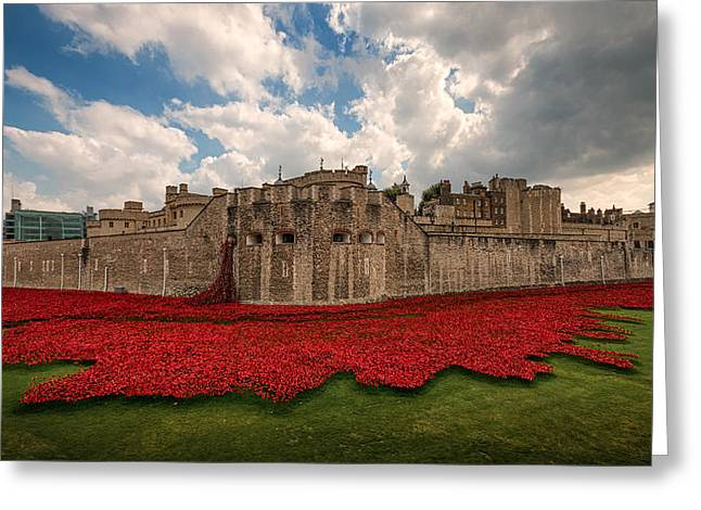 Moat Greeting Cards -   Tower of London Remembers.  Greeting Card by Ian Hufton
