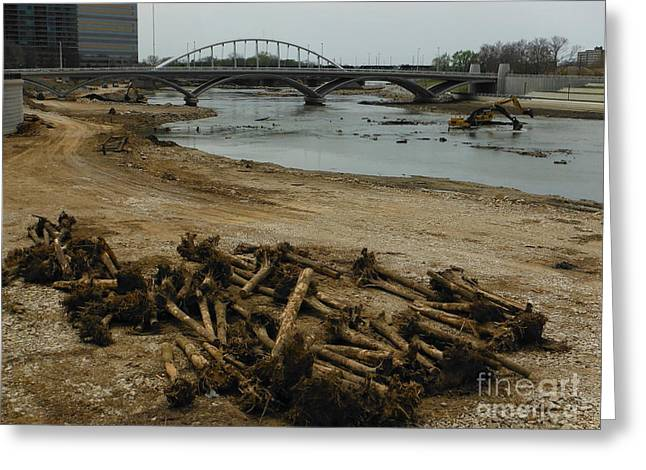 Senseless Greeting Cards -  Tree Murder And Lowhead Dam Removal Columbus Ohio USA 17 Greeting Card by Paddy Shaffer