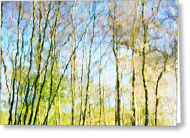 Tree Reflections Abstract Greeting Card by Natalie Kinnear