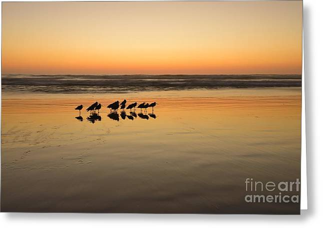 Pacific Ocean Prints Greeting Cards -  Twilight Tracks 48x72 Canvas Print Greeting Card by John Tsumas