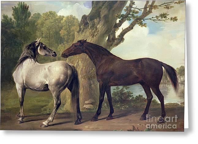 Two Horses In A Landscape Greeting Card by George Stubbs