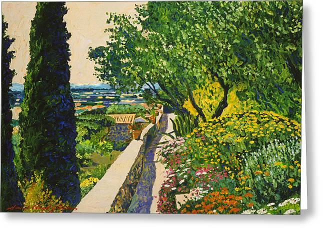 Olive Garden Greeting Cards -  View Of Provence Greeting Card by David Lloyd Glover