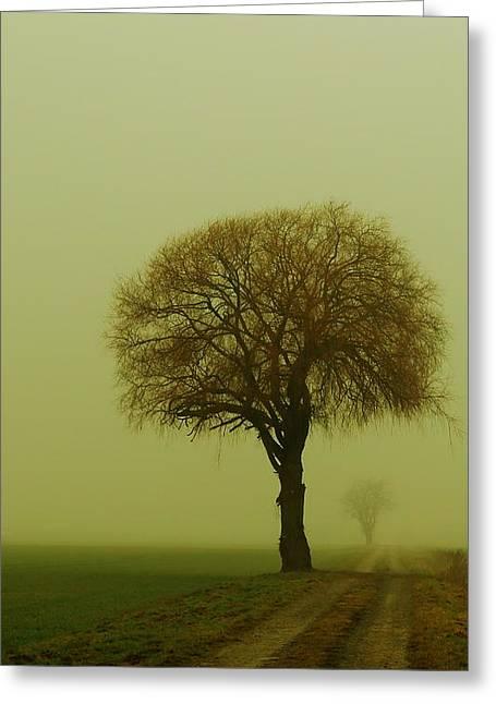 Fantasy Tree Greeting Cards -  Walk In The Fog Greeting Card by Franziskus Pfleghart