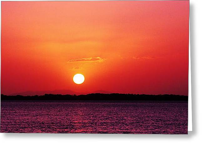 White Sun And Crimson Glow - Sunset Xmas Day. Greeting Card by Geoff Childs