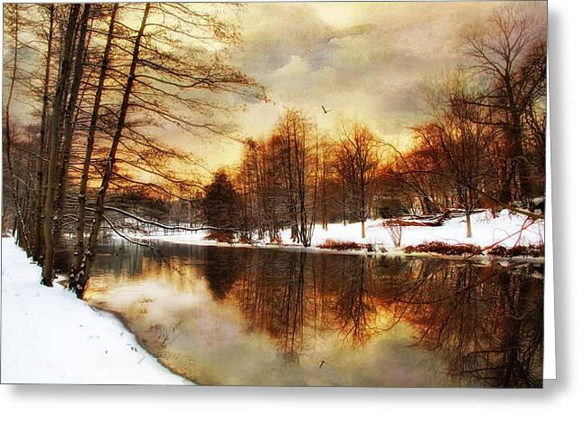 Winter Trees Digital Greeting Cards -  Winter Sunset Greeting Card by Jessica Jenney