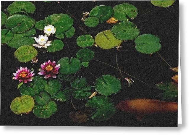 Fish Digital Art Greeting Cards - 0148-Lily -   Pastel Chalk 2 SL Greeting Card by David Lange