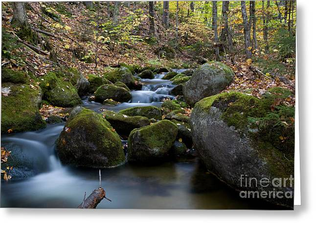 Baxter Park Greeting Cards - 0377 Baxter State Park Waterfall Greeting Card by Steve Sturgill