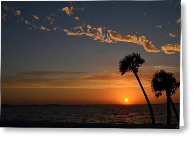 Navarre Beach Photographs Greeting Cards - 0502 Palms with Sunrise Colors on Santa Rosa Sound Greeting Card by Jeff at JSJ Photography