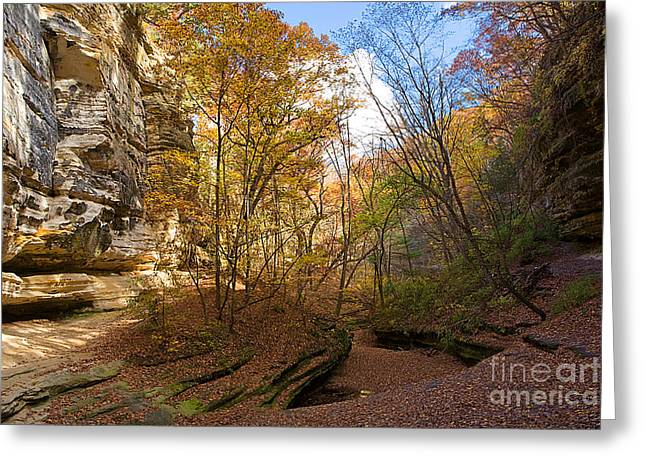Starved Rock Park Greeting Cards - 0535 Starved Rock State Park Greeting Card by Steve Sturgill