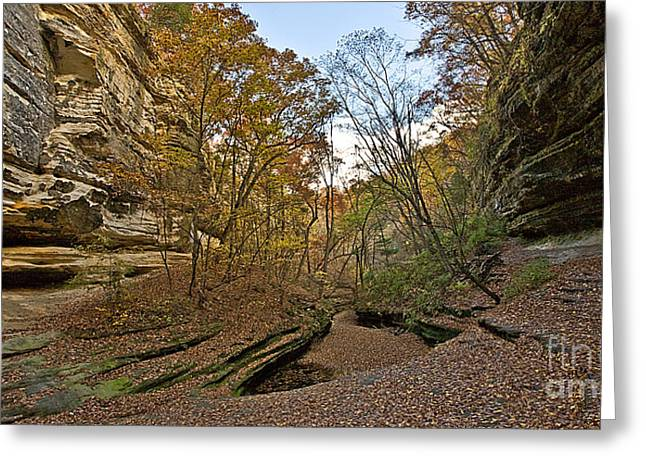 Starved Rock Park Greeting Cards - 0536 Starved Rock State Park Greeting Card by Steve Sturgill