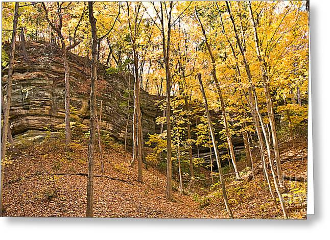 Starved Rock Park Greeting Cards - 0537 Starved Rock State Park Greeting Card by Steve Sturgill