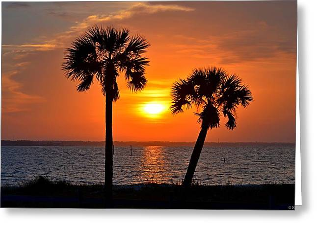 Navarre Beach Photographs Greeting Cards - 0602 Pair of Palms at Sunrise Greeting Card by Jeff at JSJ Photography