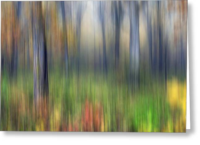 Starved Rock Park Greeting Cards - 0904 Fall Abstract - Starved Rock Greeting Card by Steve Sturgill