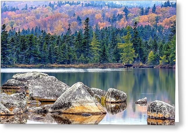 Baxter Park Greeting Cards - 0851 Baxter State Park - Maine Greeting Card by Steve Sturgill