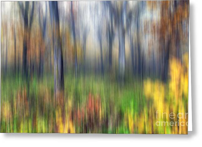 Starved Rock Park Greeting Cards - 0903 Fall Abstract - Starved Rock Greeting Card by Steve Sturgill