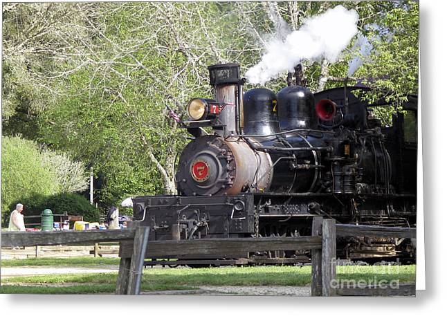 Best Sellers -  - People Pyrography Greeting Cards -  Roaring Camp Railroad  Greeting Card by Chris Berry