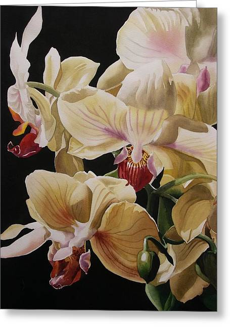 Alfred Ng Art Greeting Cards -  Yellow Orchids  Greeting Card by Alfred Ng