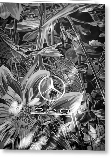 Earthly Greeting Cards - 1952 Mercedes-Benz 220 A Cabriolet - Earthly Paradise Emblem Greeting Card by Jill Reger
