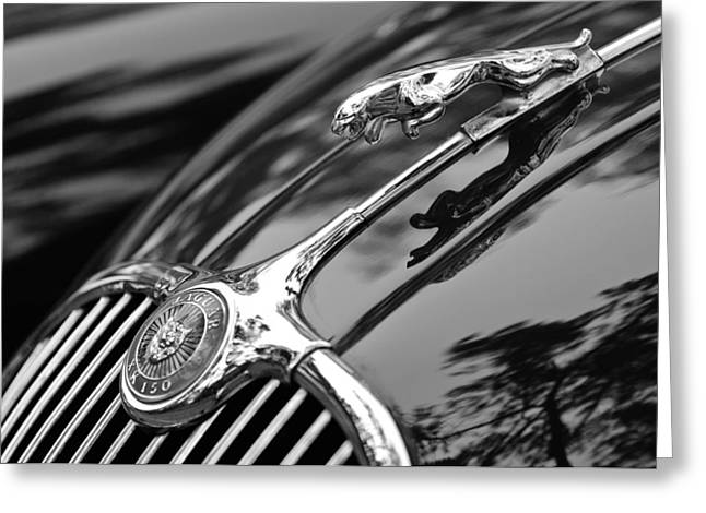 Jill Reger Photography Greeting Cards - 1955 Jaguar Xk 150 Hood Ornament Greeting Card by Jill Reger