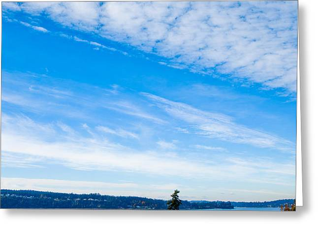 #2 at Chambers Bay Golf Course - Location of the 2015 U.S. Open Tournament Greeting Card by David Patterson