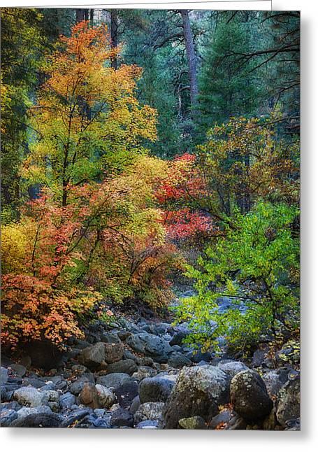 Oak Creek Greeting Cards - A Beautiful Fall Day  Greeting Card by Saija  Lehtonen
