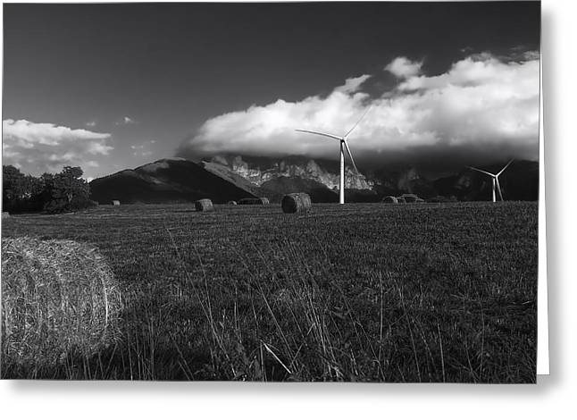 Windmill And Tree Greeting Cards - A Farm in Rural Spain Greeting Card by Mountain Dreams