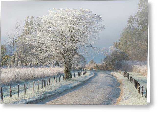 A Frosty Morning Greeting Card by Chris Moore