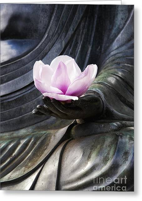 Meditate Greeting Cards - A Gift  Greeting Card by Tim Gainey