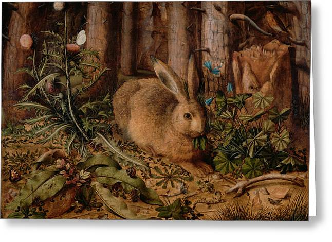 A Hare In The Forest Greeting Card by Hans Hoffmann