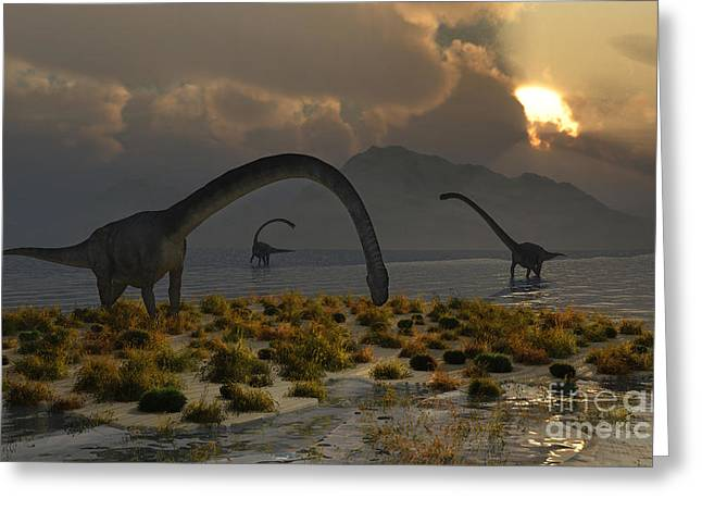 A Herd Of Omeisaurus Sauropod Dinosaurs Greeting Card by Mark Stevenson
