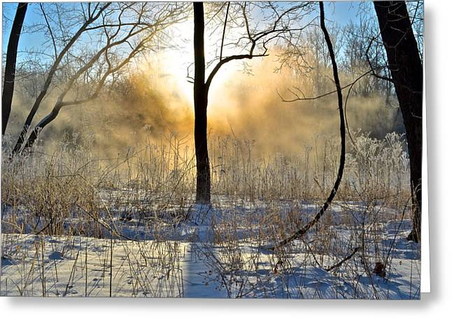 Intrigue Greeting Cards - A Light From Above Greeting Card by Frozen in Time Fine Art Photography