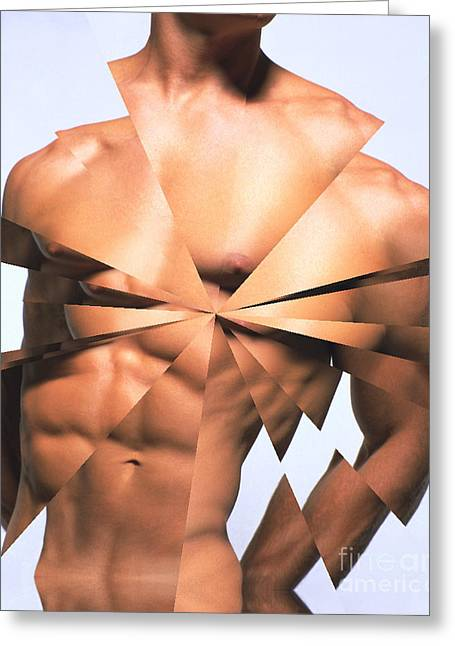 Male Torso Greeting Cards - A Mans Torso Greeting Card by Dennis Potokar