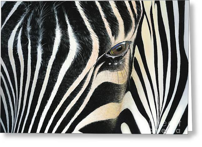 Zebra Greeting Cards Greeting Cards - A Moments Reflection Greeting Card by Mike Brown
