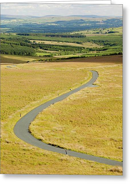 A Moorland Road Greeting Card by Ashley Cooper