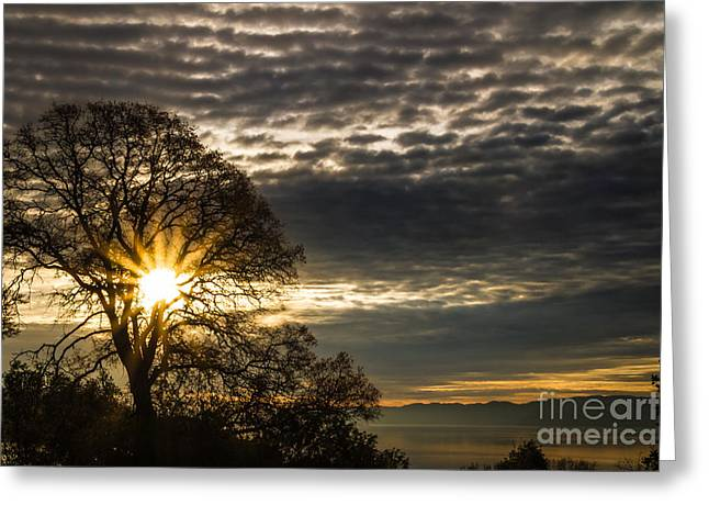 Sunrise Over California Greeting Cards - A New Day Greeting Card by Mitch Shindelbower