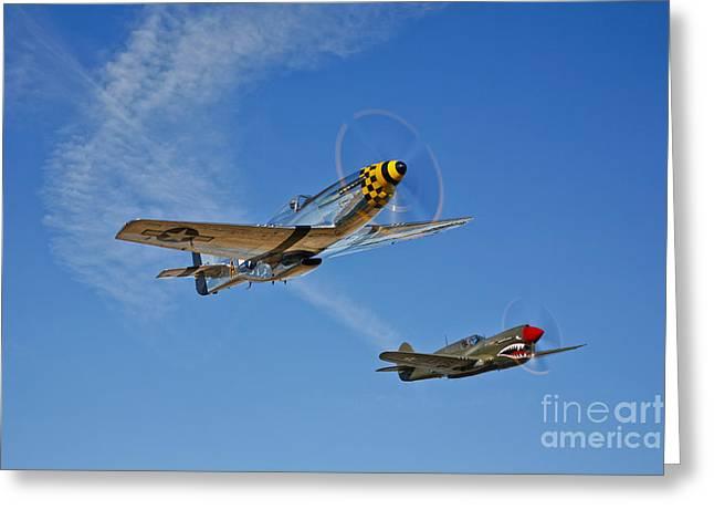 Curtiss Kittyhawk P-40 Greeting Cards - A P-51d Mustang Kimberly Kaye Greeting Card by Scott Germain
