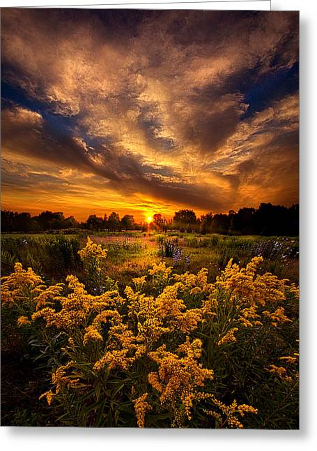 Instagood Greeting Cards - A Peaceful Easy Feeling Greeting Card by Phil Koch