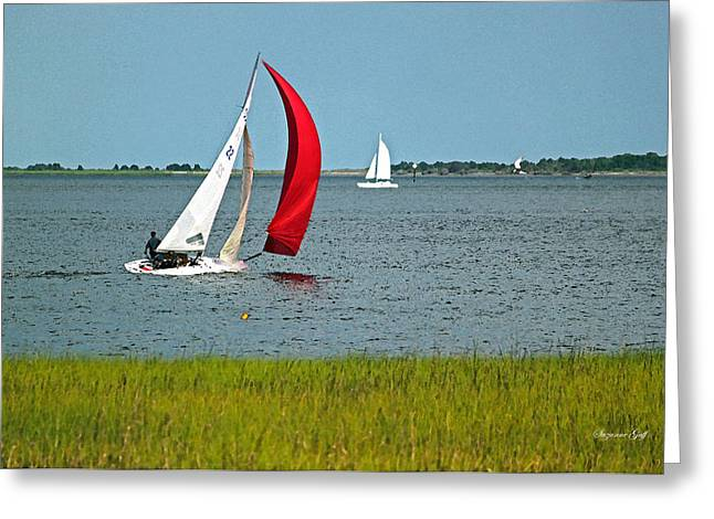 Low Country Watercolor Greeting Cards - A Perfect Day for Sailing Greeting Card by Suzanne Gaff