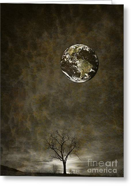 Contamination Greeting Cards - A Question Of Balance Greeting Card by John Stephens