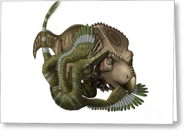 Velociraptor Greeting Cards - A Velociraptor Attacks A Protoceratops Greeting Card by Yuriy Priymak