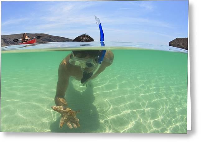 Mid Adult Women Greeting Cards - A Young Man Snorkels Holding A Starfish Greeting Card by Stuart Westmorland