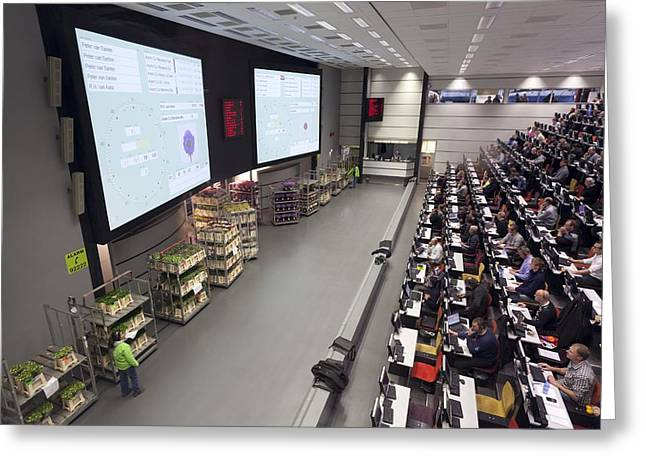 Businesspeople Greeting Cards - Aalsmeer Flower Auction Greeting Card by Science Photo Library