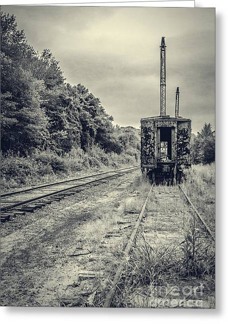 Rusted Cars Greeting Cards - Abandoned burnt out train cars Greeting Card by Edward Fielding