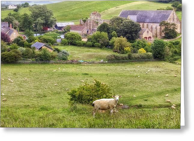 England Rural Village Greeting Cards - Abbotsbury Greeting Card by Joana Kruse