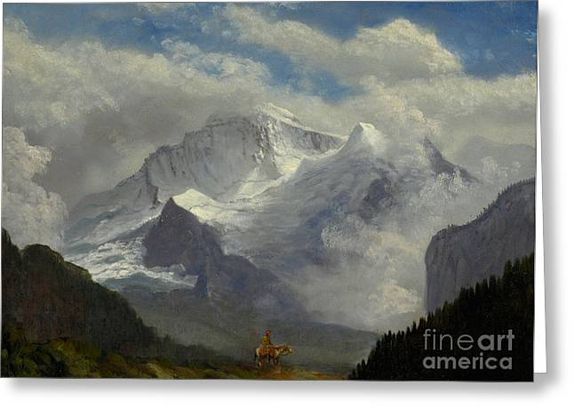 Steer Greeting Cards - Above the Timberline Greeting Card by Albert Bierstadt