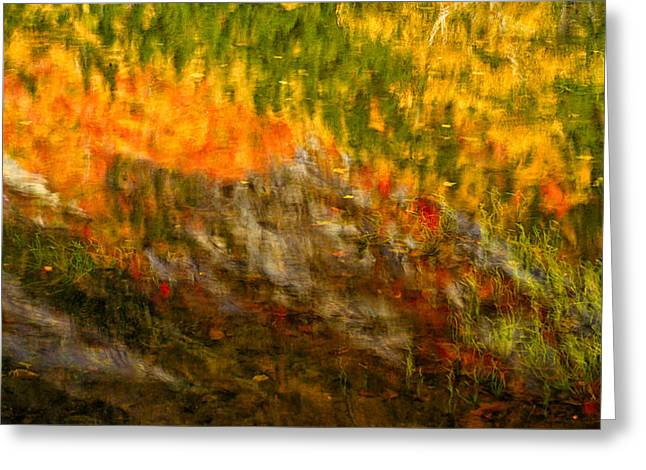 Foliage In White Mountains Greeting Cards - Abstract Autumn Reflections  Greeting Card by Jeff Sinon