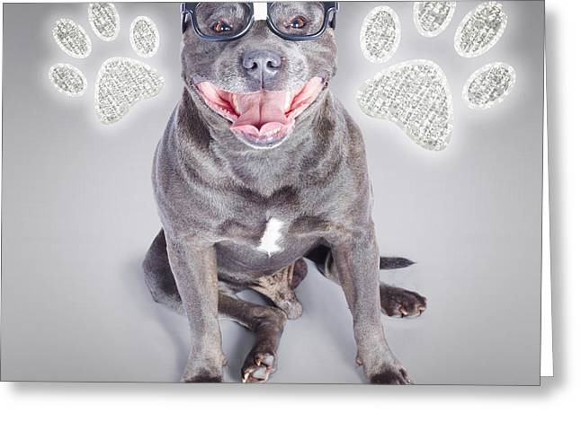 Staffie Greeting Cards - Access to smart dog training Greeting Card by Ryan Jorgensen