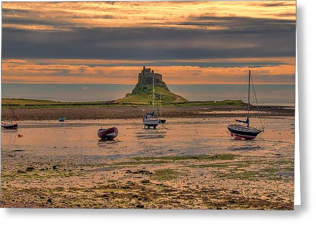Farne Islands Greeting Cards - Across The Bay Greeting Card by Trevor Kersley
