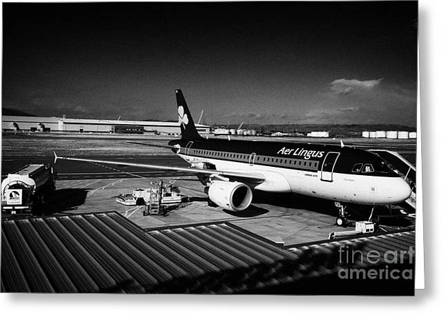 Carrier Greeting Cards - aer lingus airbus A319 Conlaed at George Best Belfast City Airport UK Greeting Card by Joe Fox